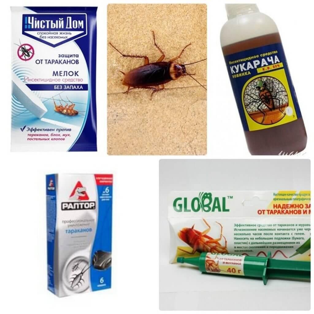 Средство от тараканов в домашних условиях народными средствами 987