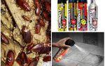 Средства Комбат от тараканов: ловушка, спрей, гель и аэрозоль