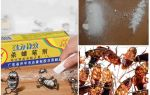 Как и чем вывести тараканов быстро в домашних условиях