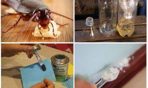 Как сделать ловушки для тараканов в домашних условиях