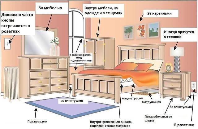 mesta-skopleniya-klopov