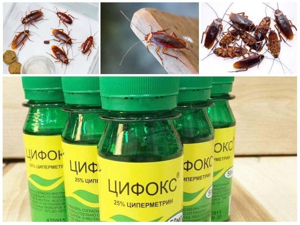 Инсектицид от насекомых