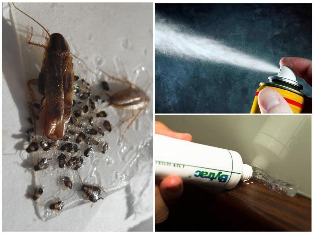Гели и аэрозоли от насекомых