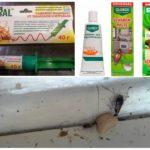 Гели для борьбы с насекомыми
