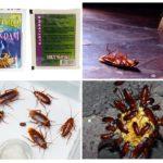 Средство от насекомых-вредителей Тиурам