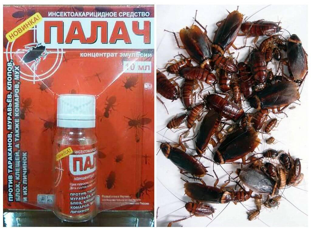 Средство Палач от тараканов