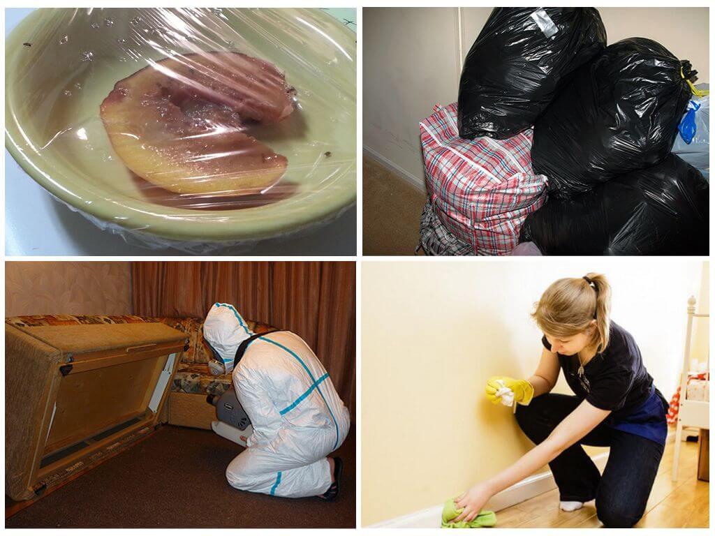 Подготовка к обработке дома от тараканов