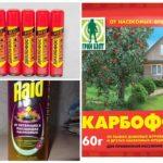 Спреи и порошки от тараканов