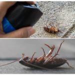 Аэрозоли и спреи от тараканов