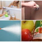 Генеральная уборка помогает избавится от тараканов