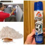 Средства для борьбы с тараканами в домашних условиях