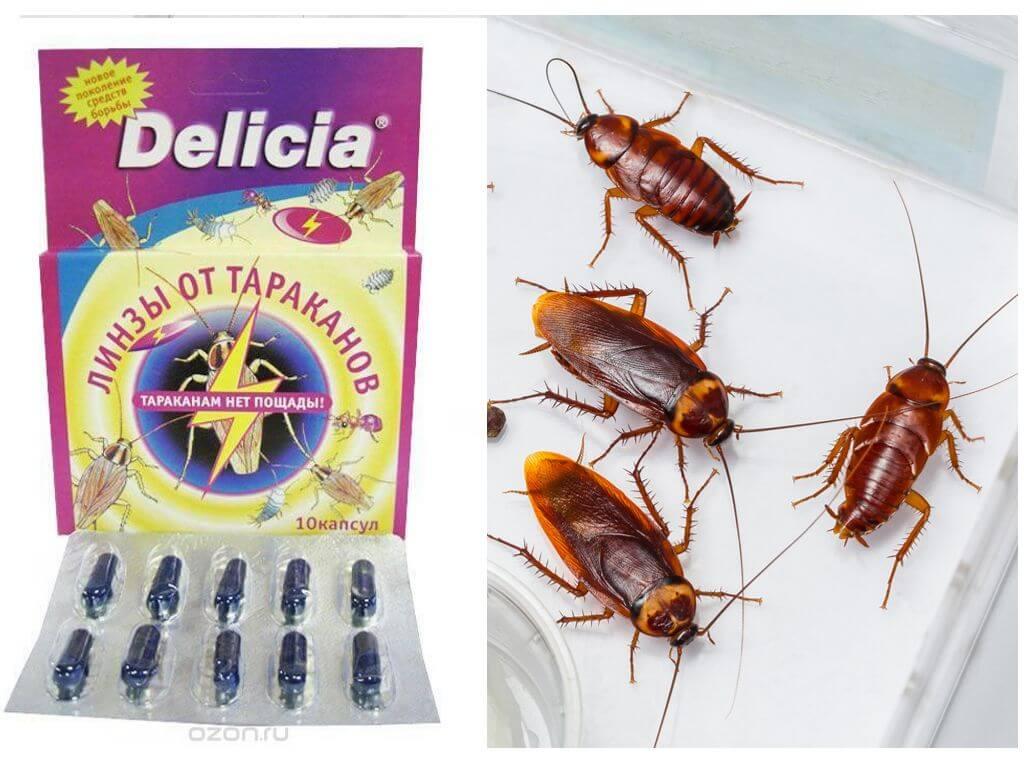 Delicia от тараканов