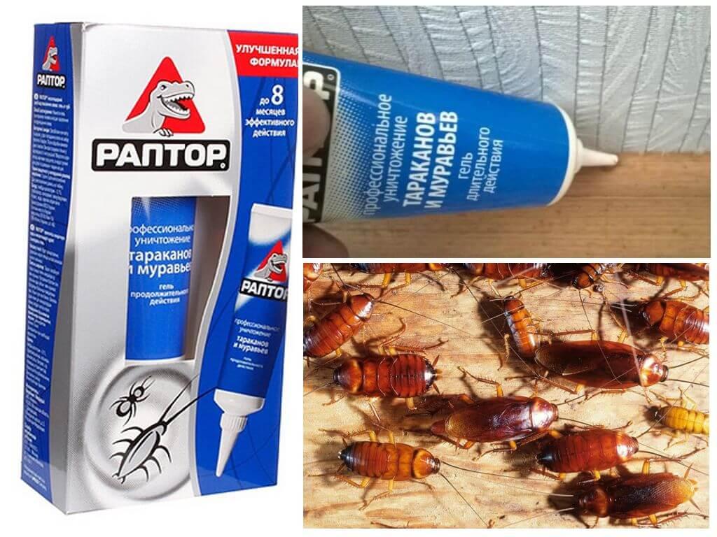 Гель Раптор от тараканов и муравьев