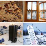 Температурные методы борьбы с насекомыми