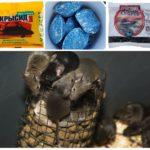 Химические препараты от грызунов