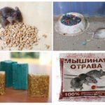 Яд для борьбы с мышами