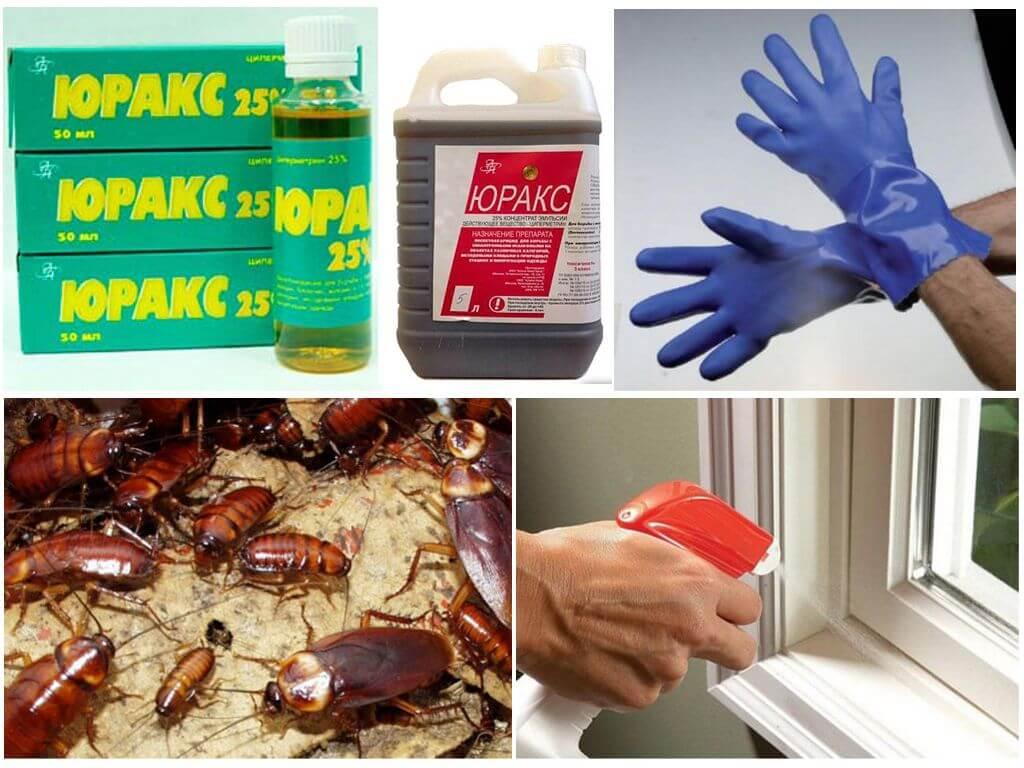 Применение препарата Юракс от тараканов