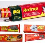 Популярные клеи от крыс