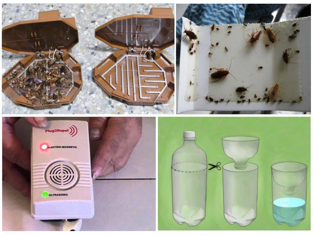 Физические способы борьбы с тараканами