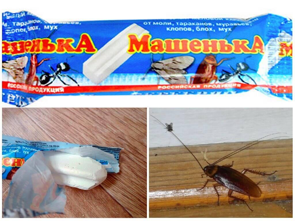 Машенька против тараканов
