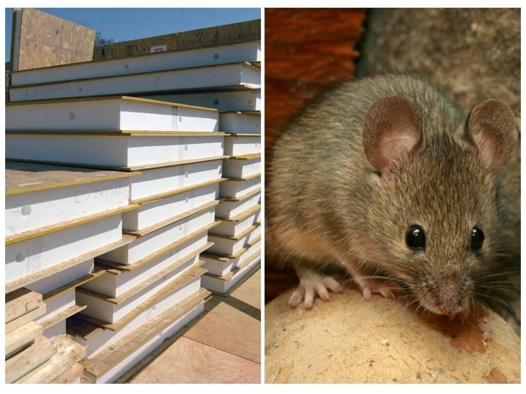 Сип панели и мыши