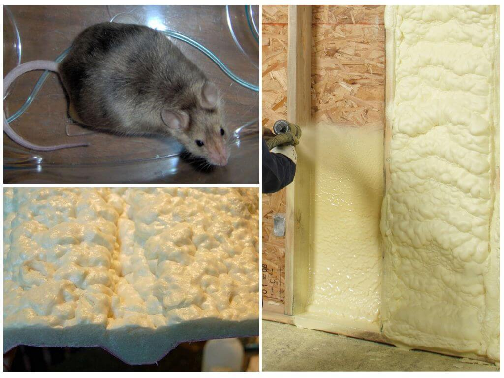 Мыши и монтажная пена