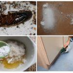 Применение дустов от насекомых