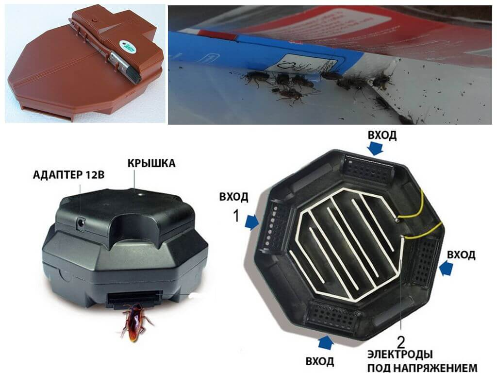Электроловушка для защиты от тараканов