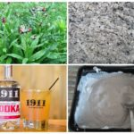 Народные рецепты для борьбы с грызунами