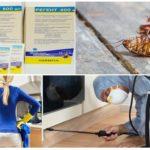 Применение Регента от тараканов