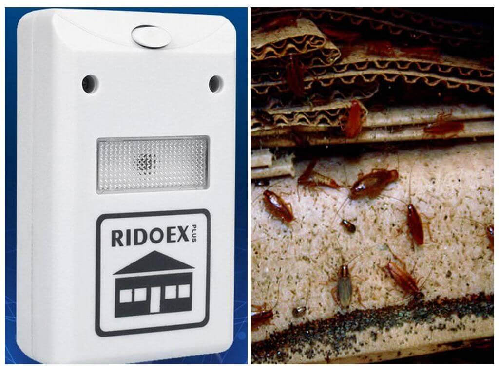 Pest Repelling Aid в борьбе с прусаками
