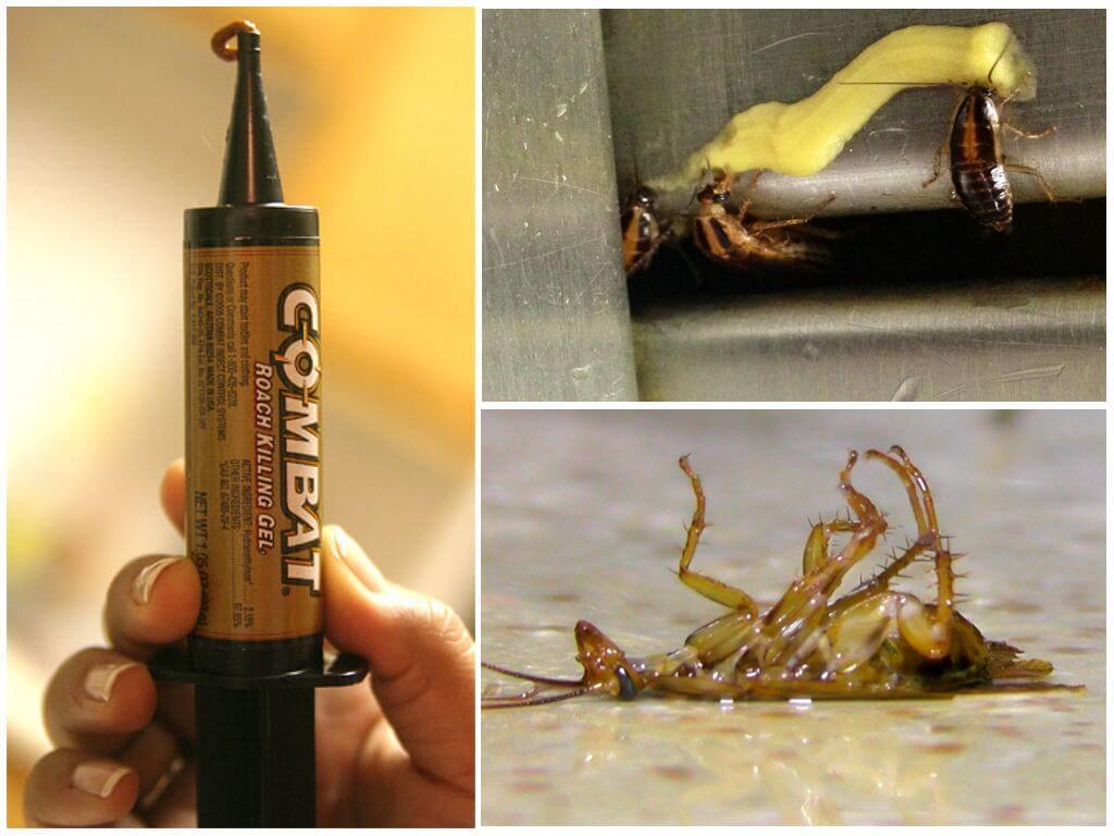 Гель в шприцах от тараканов