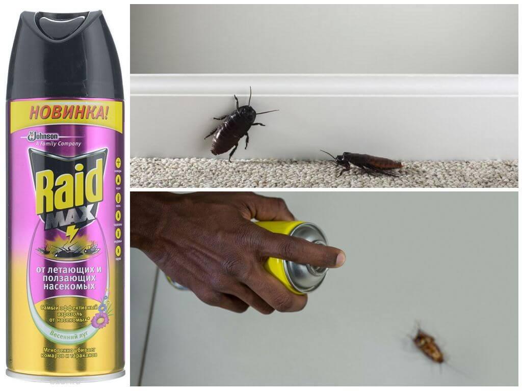 Спрей Рейд от тараканов