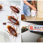 Средства борьбы с насекомыми