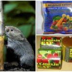 Препараты для восстановления деревьев