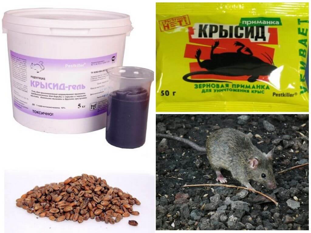 Крысид против мышей
