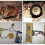 Ультразвуковой отпугиватель крыс и мышей своими руками