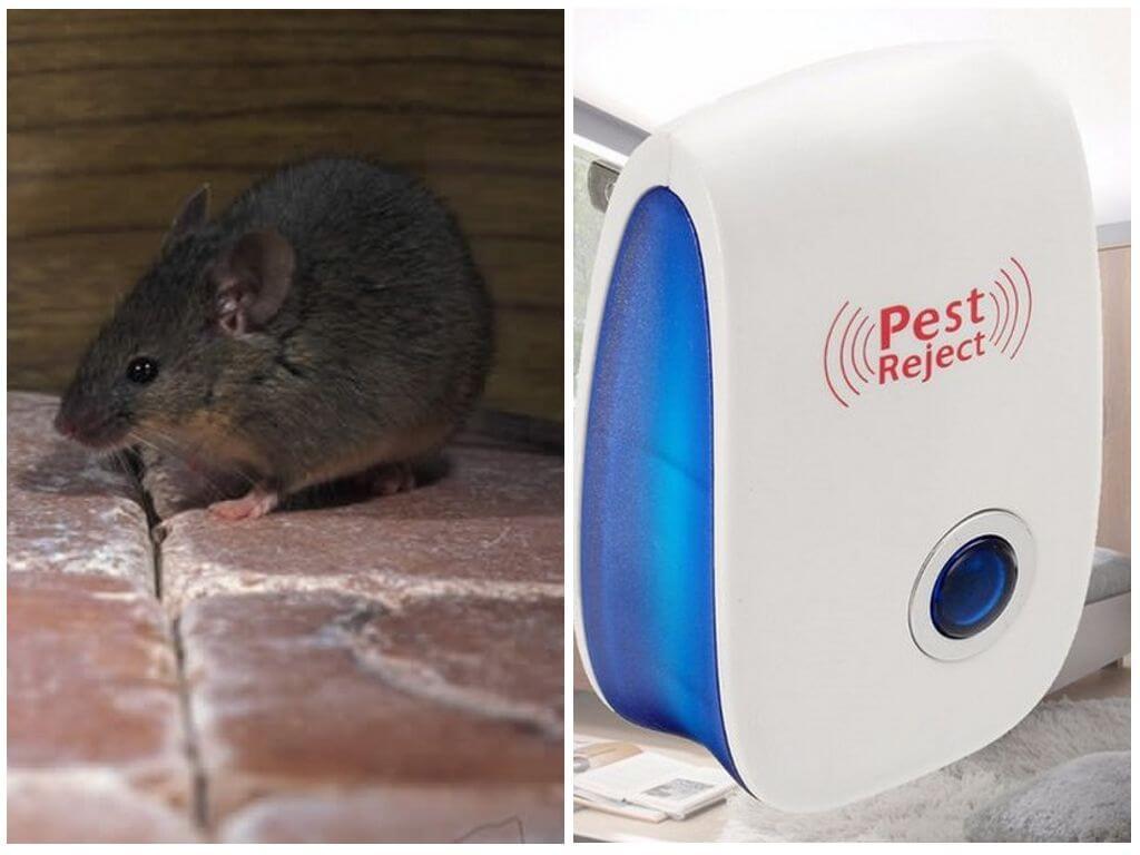 Электронный отпугиватель насекомых и грызунов Pest Reject