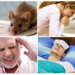 Признаки лептоспироза