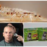 Радикальные меры при борьбе с паразитами