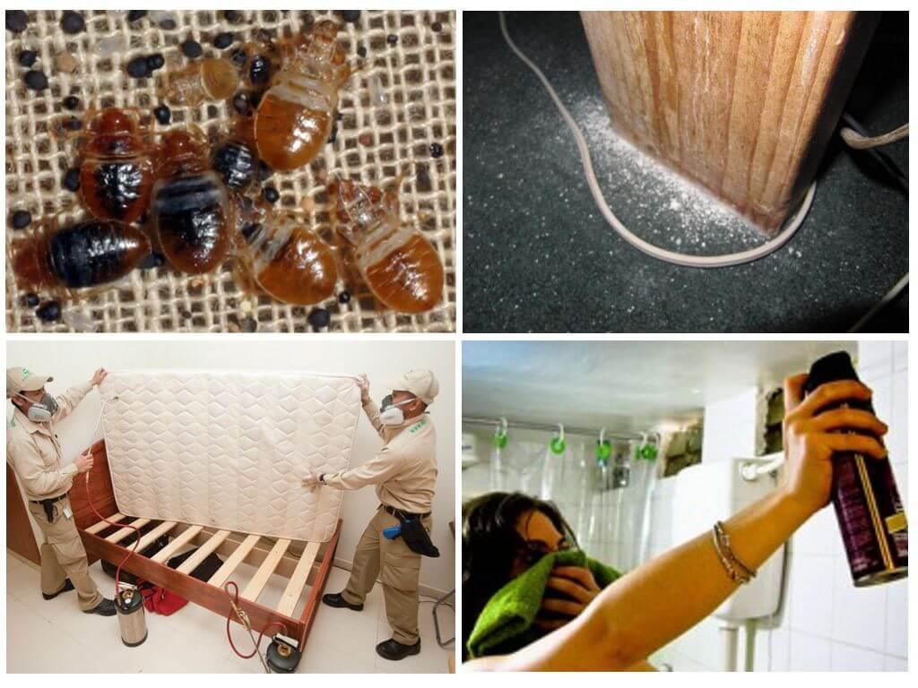 Применение средств от насекомых