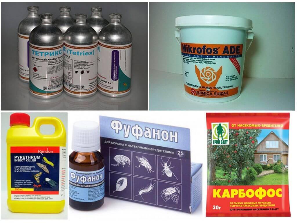 Химические препараты от клопов