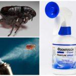 Борьба с эктопаразитами