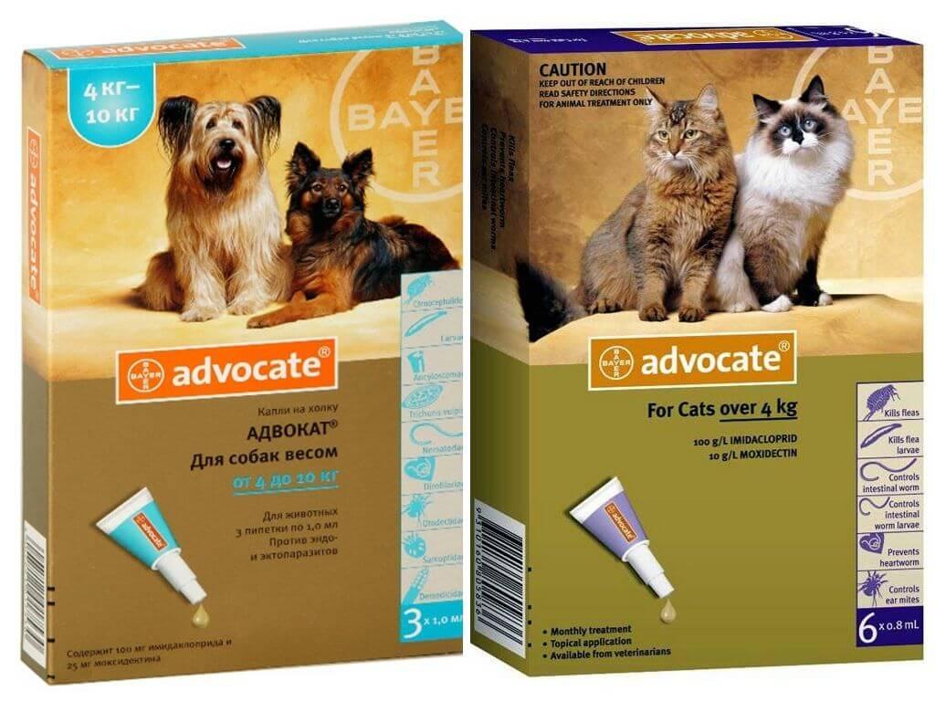 Капли Адвокат от блох для собак и кошек