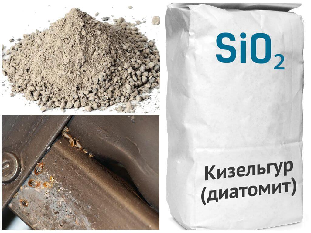 Кизельгур (диатомовая земля) от клопов