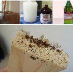 Методы борьбы с насекомыми