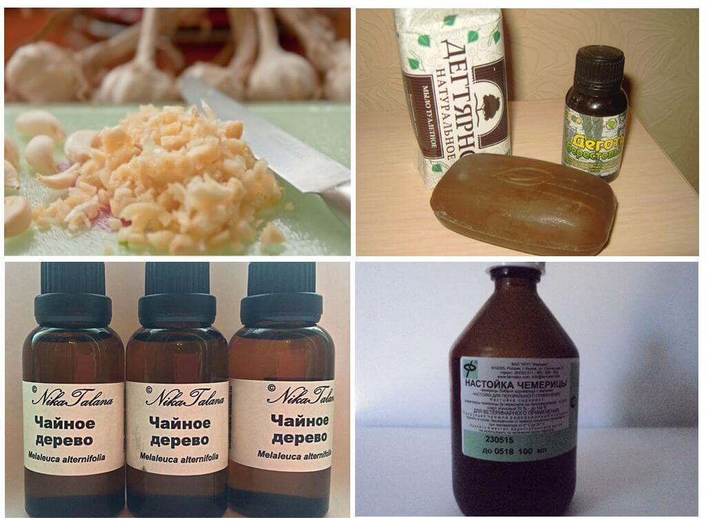 Народные способы лечения педикулеза