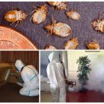 Методы уничтожения насекомых