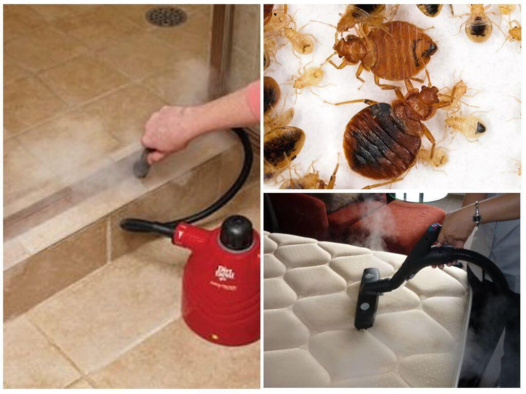 Парогенератор для борьбы с насекомыми