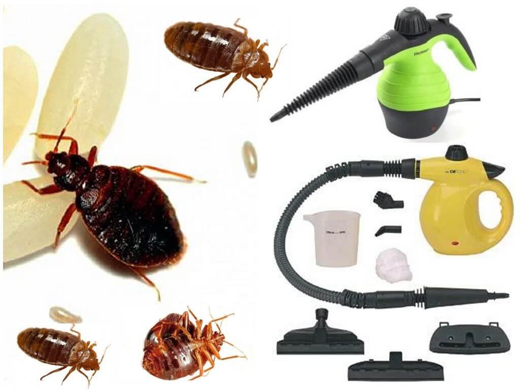 Пароочиститель для борьбы с паразитами